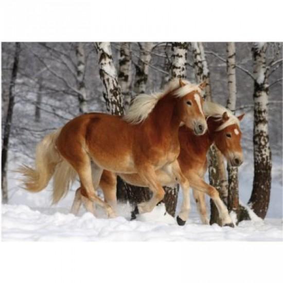 Puzzle 239 pièces - Magie des chevaux : Cheval Haflinger III - DToys-65933HH03