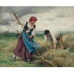 Puzzle 1000 pièces : Julien Dupré : La récolte des foins