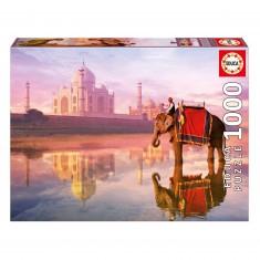 Puzzle 1000 pièces : Elephant et Taj Mahal