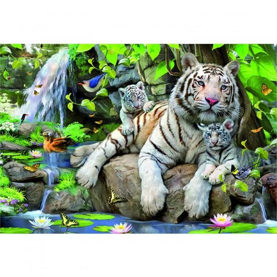 Puzzle 1000 pièces - Tigres blancs du Bengale - Educa-14808