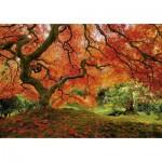 Puzzle 1500 pièces : Jardin japonais