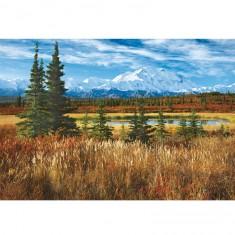Puzzle 1500 pièces : Parc national de Denali, Alaska