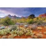 Puzzle 4000 pièces : Coucher de soleil à Red Rock, Arizona, USA