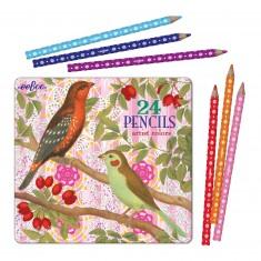 Crayons de couleur : Oiseaux et Baies