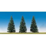Modélisme : Végétation : 3 sapins nordiques