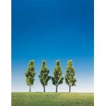 Modélisme : Végétation : 4 bouleaux