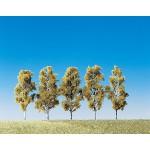 Modélisme : Végétation : 5 bouleaux