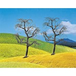 Modélisme : Végétation : Arbres Premium : 2 arbres sans feuilles