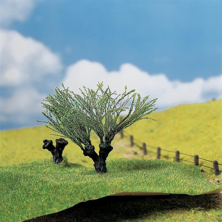 Modélisme : Végétation : Arbres Premium : 2 saules têtards - Faller-181327