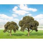 Modélisme : Végétation : Arbres Premium : 2 sureaux