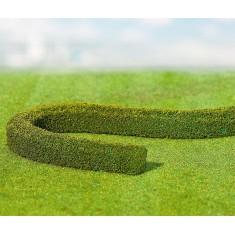Modélisme : Végétation : Haies de décoration charmille Premium