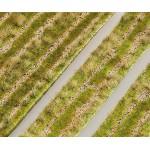 Modélisme : Végétation : Segments de paysage Premium : Chemins ruraux