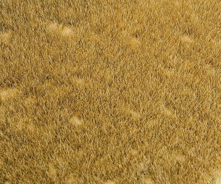 Modélisme : Végétation : Segments de paysage Premium : Prairie d'herbes sauv - Faller-180465