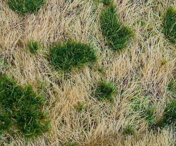 Modélisme : Végétation : Segments de paysage Premium : Remblai talus - Faller-180474