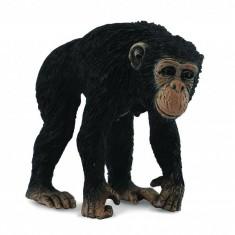 Figurine Singe : Chimpanzé : Femelle