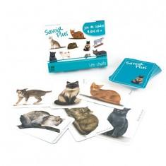 Jeu de cartes Savoir Plus : Les chats