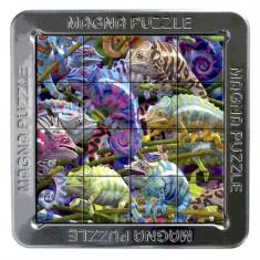 Puzzle 3D 16 pièces : Magna Puzzle : Caméléons