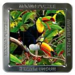 Puzzle 3D 16 pièces : Magna Puzzle : Toucans