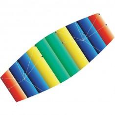 Cerf volant multicolore