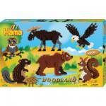 Boîte de 6000 perles et plaques Hama Midi : Les animaux de la forêt