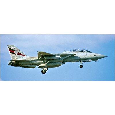 Maquette avion: F-14A Blacks Knights - Hasegawa-00985