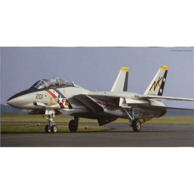 Maquette avion : F-14A Tomcat Early - Hasegawa-00863