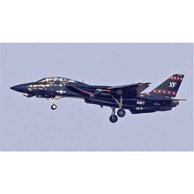 Maquette avion: F-14D Tomcat  - Hasegawa-09867