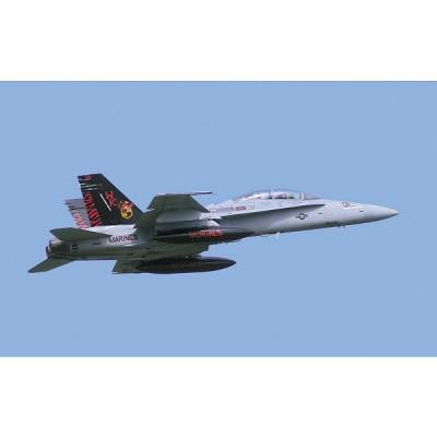 Maquette avion: F/A-18D Hornet Iwakuni Marking: Limited Edition - Hasegawa-09946