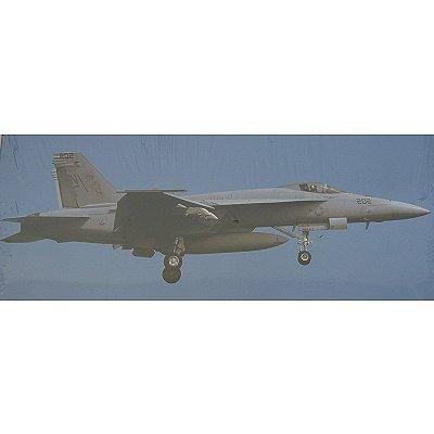 Maquette avion: F/A-18E Super Hornet Low Visibility - Hasegawa-00829