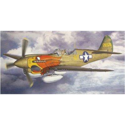 Maquette avion: P-40N 502ND F.G. Squadron - Hasegawa-09769