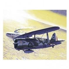 Maquette avion: Helldiver
