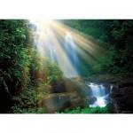 Puzzle 1000 pièces - Forêt magique : Cascade