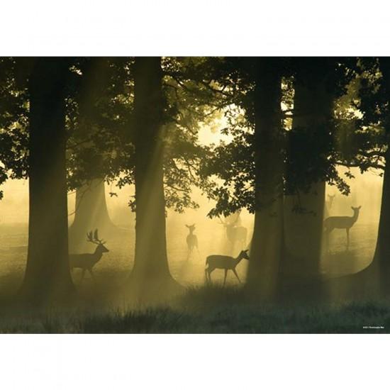 Puzzle 1000 pièces - Forêt magique : Les cerfs - Heye-29497-58209