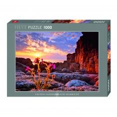 Puzzle 1000 pièces : Compagnon rouge