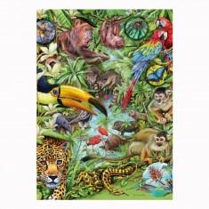 Puzzle 1000 pièces Flora & Fauna : Marion Wieczorek, Forêt tropicale