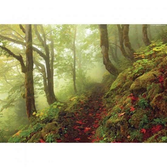 Puzzle 1000 pièces Forêts magiques : Chemin - Heye-29519-58231