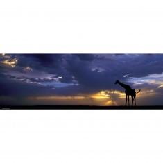 Puzzle 1000 pièces panoramique - Alexander von Humboldt : Sunset