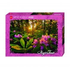Puzzle 2000 pièces : Forêt magique Rhododendron