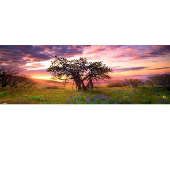 Puzzle 2000 pièces panoramique - Alexander von Humboldt : Le chêne - Heye-29472-58235