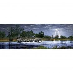 Puzzle 2000 pièces panoramique Edition Alexander Humboldt Alex Bernasconi : Troupeau d'éléphants