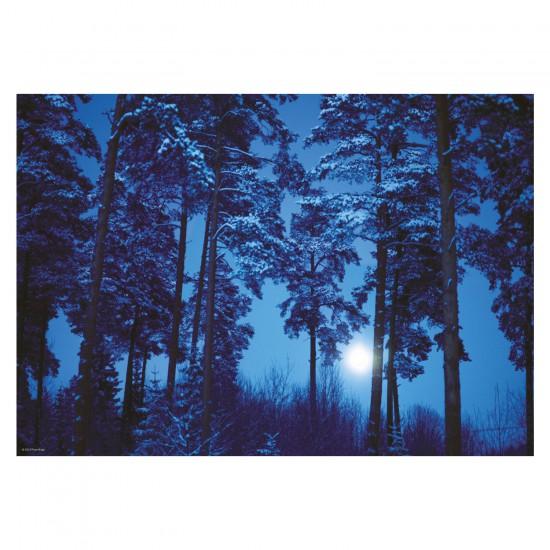 Puzzle 500 pièces Magic Forests : Binge Eliasson, Pleine lune - Mercier-29625-58093