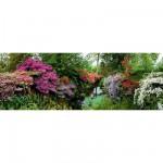 Puzzle 6000 pièces panoramique - Alexander von Humboldt : Bodnant Garden