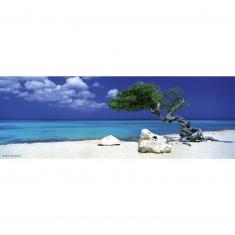 Puzzle 75 pièces panoramique Edition Alexander Humboldt : Divi Divi Tree