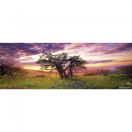 Puzzle 75 pièces panoramique Edition Alexander Humboldt : Oak Tree - Heye-57907-29532