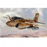 Maquette avion: EA-6B Prowler