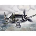 Maquette avion: Focke-Wulf Fw 190 D-9