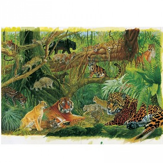 Puzzle 1000 pièce - Les félins de la jungle - Hamilton-RC1/1025