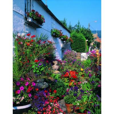 Puzzle 1000 pi ces classic deluxe cottage fleuri for Jardin deluxe fleurs