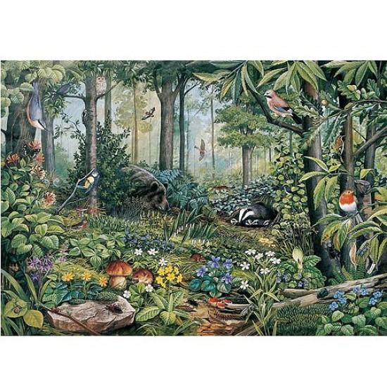 Puzzle 1000 pièces - Collection européenne : Forêt sauvage - Hamilton-EC11/1023