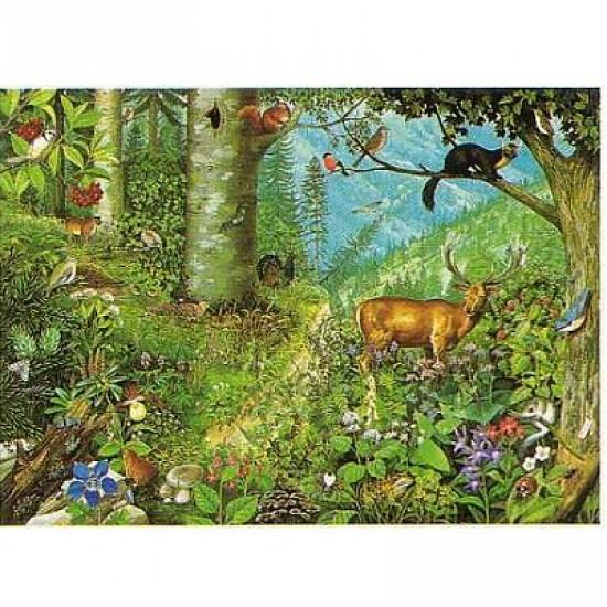 Puzzle 1000 pièces - Collection européenne : Forêt de montagne - Hamilton-EC6/1012